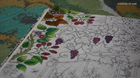 ideias jardim secreto:Jardim Secreto Livro de Colorir detalhe